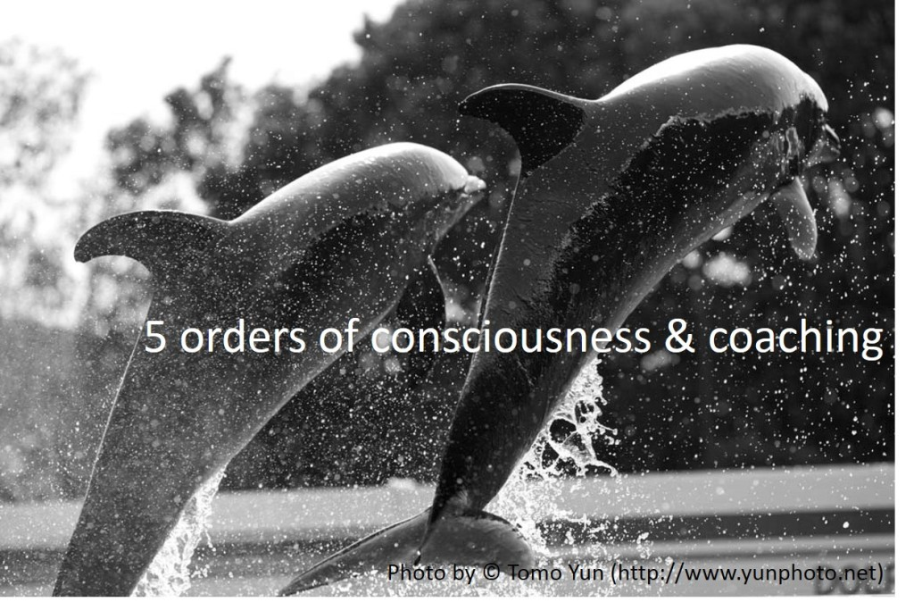 5_orders_of_consciousness