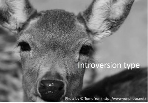 Introversion type