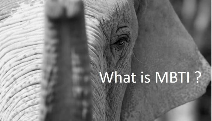MBTIとは?|MBTIが人生に役立つ3つの理由