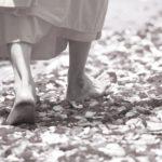 「速い感情」と「遅い感情」の使い分け|ヴィパッサナー瞑想の効果