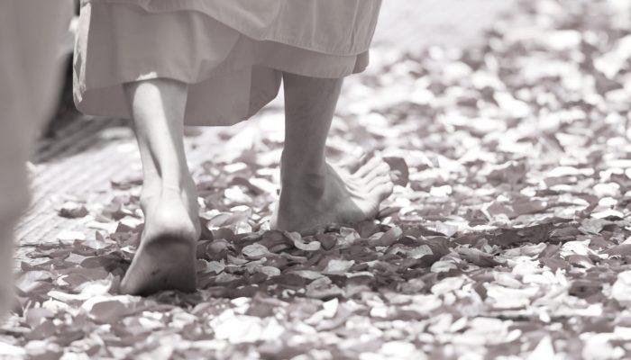 「感情的」に反応しない方法。瞑想で穏やかさを保つ